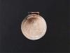 Medal-yumru-7